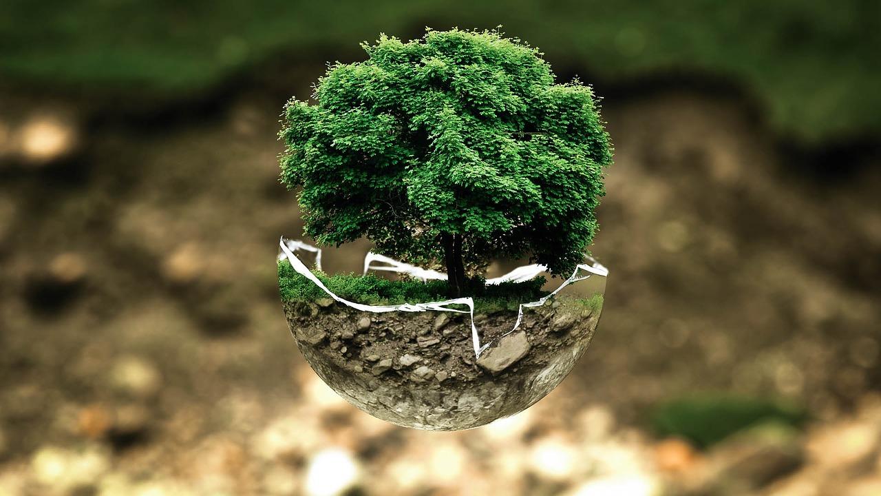 Le développement durable, un enjeu considérable